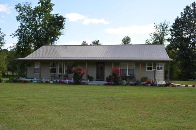 19323 Nettle Drive, Neosho, MO 64850 (MLS #60111210) :: Greater Springfield, REALTORS
