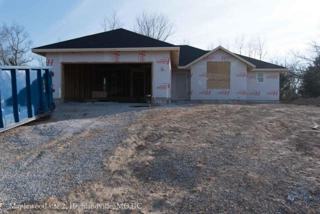 521 Terri Court, Highlandville, MO 65669 (MLS #60111278) :: Team Real Estate - Springfield