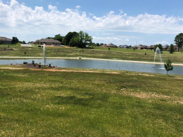 Lot 113 Village Of Ashford, Nixa, MO 65714 (MLS #60111563) :: Greater Springfield, REALTORS