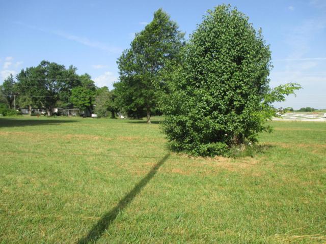 Rt 2 1.2 Acres Hwy B, Wheatland, MO 65779 (MLS #60111770) :: Team Real Estate - Springfield