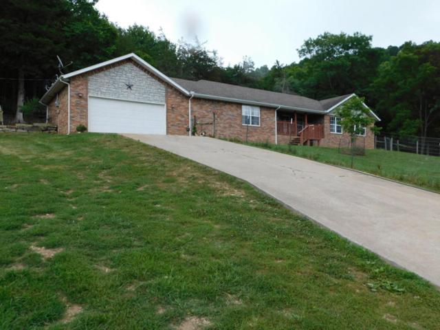 97 Medicine Bow Lane, Crane, MO 65633 (MLS #60112030) :: Team Real Estate - Springfield
