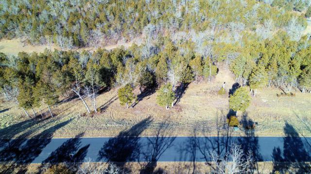 Tbd Lot 82Bb Cedar Bluff, Saddlebrooke, MO 65630 (MLS #60112790) :: Team Real Estate - Springfield