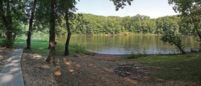 274 Foggy River Road, Hollister, MO 65672 (MLS #60113000) :: Team Real Estate - Springfield