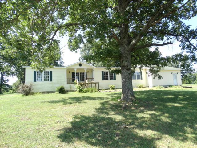 306 W Main Street, Crane, MO 65633 (MLS #60113045) :: Team Real Estate - Springfield