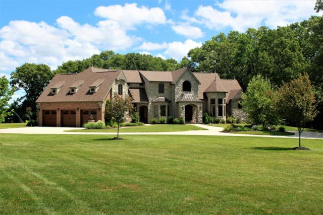 1751 E Cottage Boulevard, Ozark, MO 65721 (MLS #60113076) :: Good Life Realty of Missouri