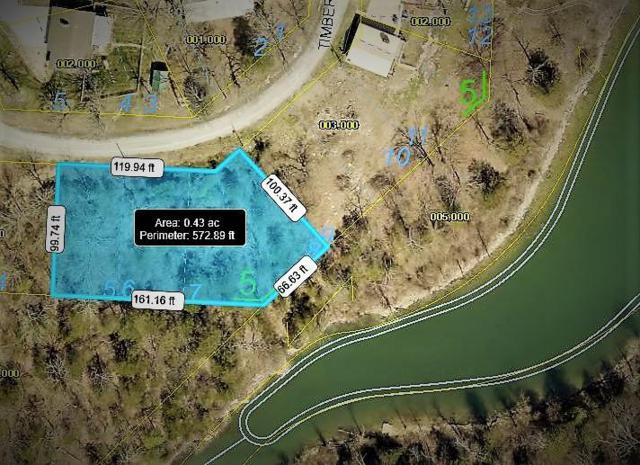 66 Timberview Lane Lane, Blue Eye, MO 65611 (MLS #60113478) :: Good Life Realty of Missouri