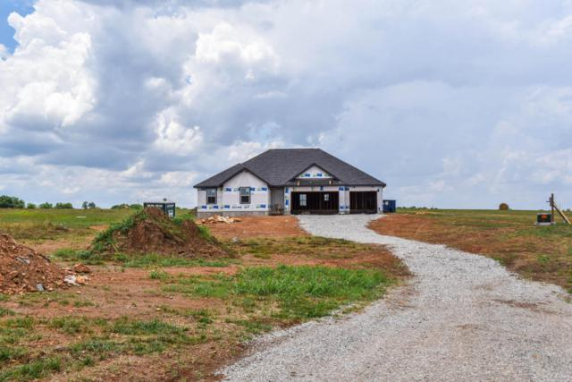 153 Southern Fields Circle, Clever, MO 65631 (MLS #60113960) :: Team Real Estate - Springfield