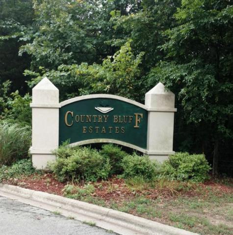131 Columbus Trail Trail, Branson, MO 65616 (MLS #60114200) :: Team Real Estate - Springfield