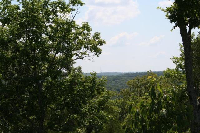 Lot 158 Forest Lake, Branson West, MO 65737 (MLS #60114356) :: Greater Springfield, REALTORS