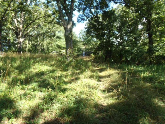 Tbd State Route Dd, Willow Springs, MO 65793 (MLS #60114484) :: Good Life Realty of Missouri