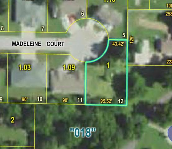 000 Madeleine Court, Mountain Grove, MO 65711 (MLS #60114497) :: Good Life Realty of Missouri
