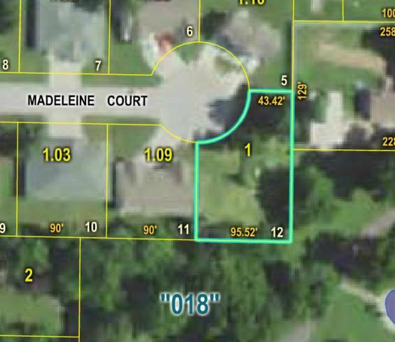 000 Madeleine Court, Mountain Grove, MO 65711 (MLS #60114497) :: Greater Springfield, REALTORS