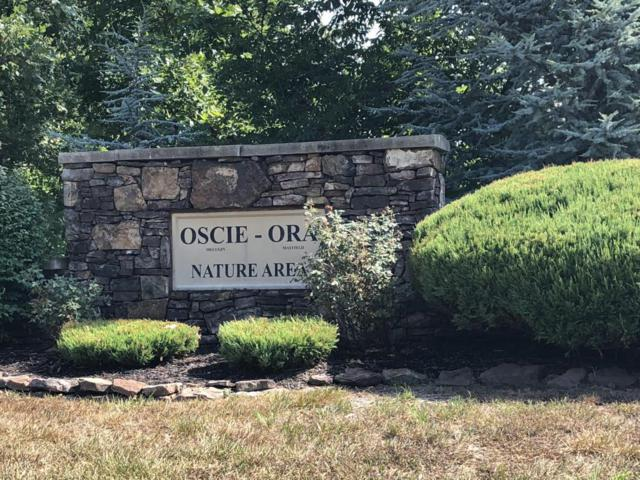 Lot 14 Sub Plat 1 Oscie-Ora, Webb City, MO 64870 (MLS #60114699) :: Greater Springfield, REALTORS