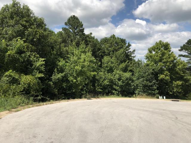 225 Lillian Lane, Hollister, MO 65672 (MLS #60114809) :: Good Life Realty of Missouri
