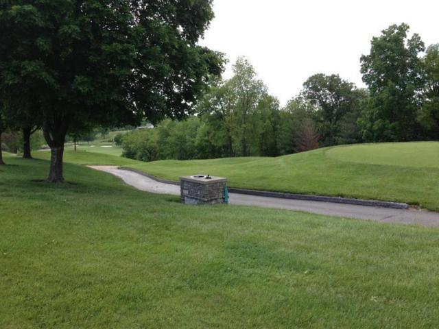 4051 E Eaglescliffe Drive, Springfield, MO 65809 (MLS #60114826) :: Greater Springfield, REALTORS