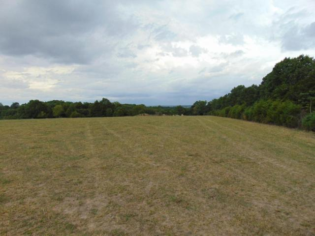 Tbd St. Hwy C, Cassville, MO 65625 (MLS #60115924) :: Team Real Estate - Springfield