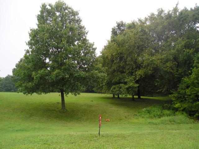 Lot 35 Block 3 S Loma Linda Drive, Loma Linda, MO 64804 (MLS #60116053) :: Good Life Realty of Missouri
