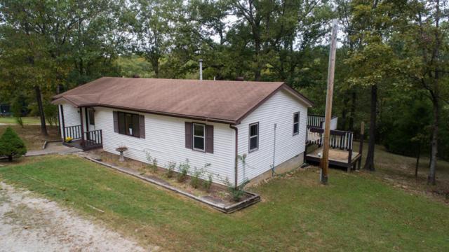 395 Shady Rapids Road, Walnut Shade, MO 65771 (MLS #60116182) :: Team Real Estate - Springfield