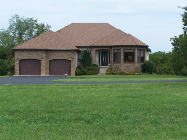 550 Abby Lane, Marshfield, MO 65706 (MLS #60116269) :: Team Real Estate - Springfield