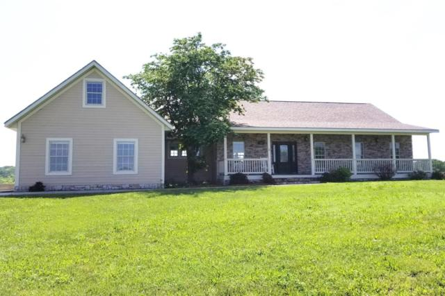 300 Spring View Place, Reeds Spring, MO 65737 (MLS #60116769) :: Team Real Estate - Springfield