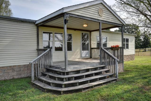 9039 E Farm Rd 186, Rogersville, MO 65742 (MLS #60116853) :: Team Real Estate - Springfield