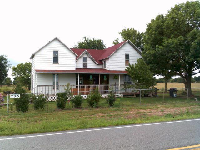 705 Main Street, Freistatt, MO 65654 (MLS #60116923) :: Team Real Estate - Springfield