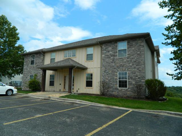 141 Toni Lane Lane #1, Branson, MO 65616 (MLS #60117101) :: Team Real Estate - Springfield
