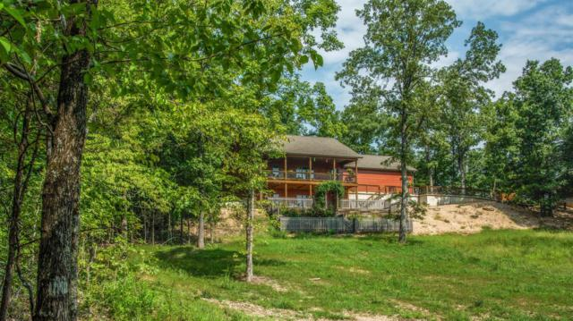 100 County Road 620D, Isabella, MO 65676 (MLS #60117807) :: Greater Springfield, REALTORS
