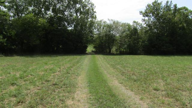 5174 S 225th Road, Halfway, MO 65663 (MLS #60118083) :: Team Real Estate - Springfield
