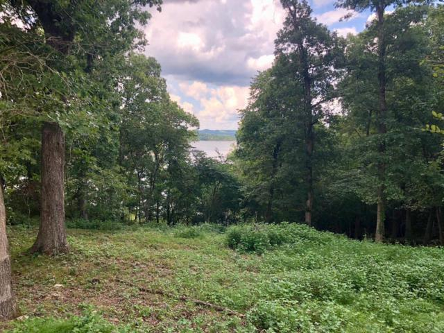 Tba N Fork Lot 36 The Peninsula, Shell Knob, MO 65747 (MLS #60118193) :: Team Real Estate - Springfield