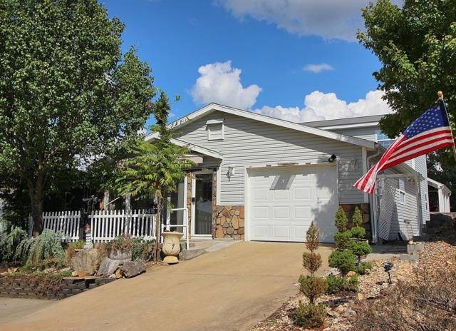 146 Hill Drive, Branson, MO 65616 (MLS #60118499) :: Good Life Realty of Missouri