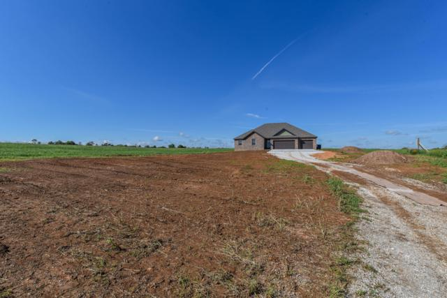 153 Southern Fields Circle, Clever, MO 65631 (MLS #60119139) :: Team Real Estate - Springfield