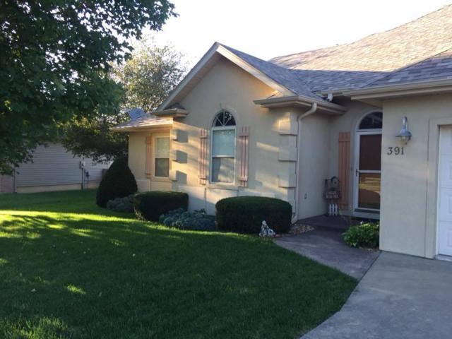 391 Shores Parkway, Rogersville, MO 65742 (MLS #60119176) :: Team Real Estate - Springfield