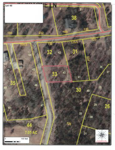 0 2250 Road No. 3, Lot 43, Golden, MO 65658 (MLS #60119289) :: Massengale Group