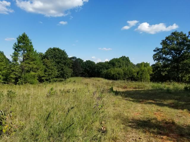 Tbd Round Mountain Road, Chadwick, MO 65629 (MLS #60119701) :: Team Real Estate - Springfield