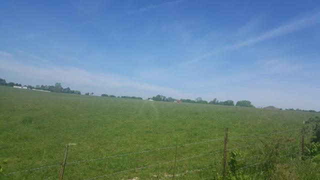 Lot 4 Hidden Valley 5 Road, Clever, MO 65631 (MLS #60119709) :: Team Real Estate - Springfield