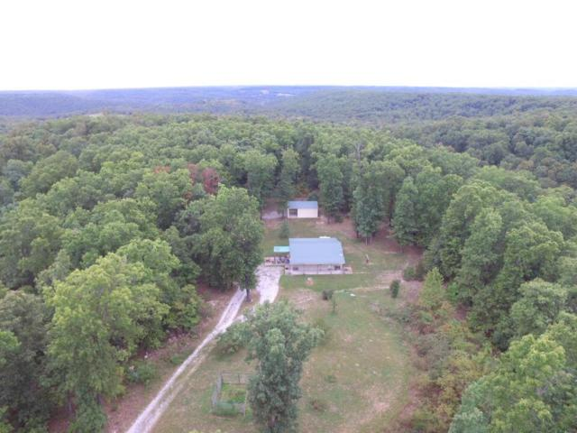 1191 State Hwy Dd, Bruner, MO 65620 (MLS #60119740) :: Team Real Estate - Springfield