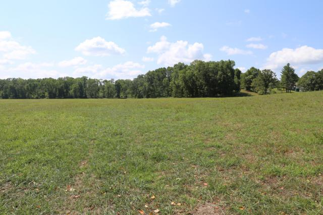 Tbd Hwy Bb Lot 19, West Plains, MO 65775 (MLS #60119741) :: Greater Springfield, REALTORS