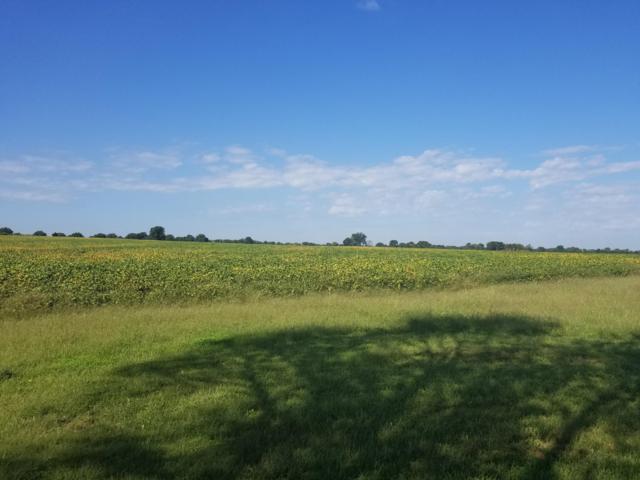 Tbd NW 451, Lowry City, MO 64763 (MLS #60119894) :: Good Life Realty of Missouri