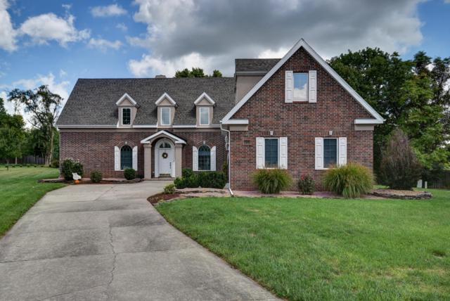 4883 E Alameda Court, Springfield, MO 65809 (MLS #60119952) :: Team Real Estate - Springfield