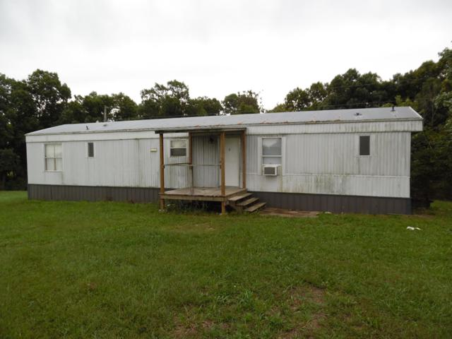 20723 State Highway Tt, Crane, MO 65633 (MLS #60120142) :: Team Real Estate - Springfield