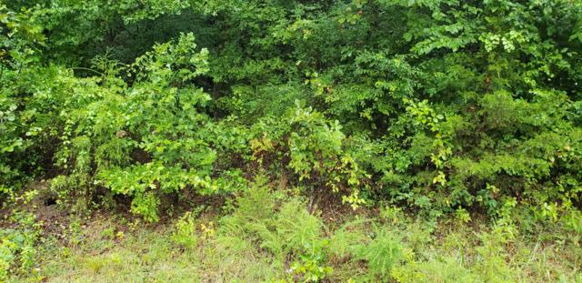 Lot 46 W Marion Lane, Kirbyville, MO 65679 (MLS #60120367) :: Tucker Real Estate Group | EXP Realty