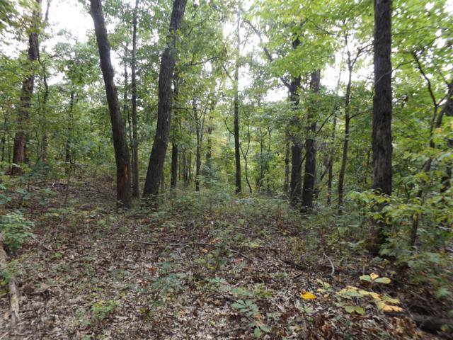 Lot 22 Cyclone Hills, Pineville, MO 64856 (MLS #60120620) :: Sue Carter Real Estate Group