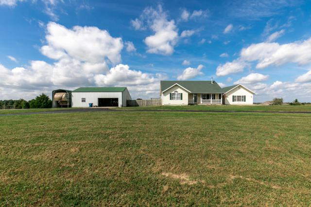 100 Shelbrae Lane, Clever, MO 65631 (MLS #60120813) :: Team Real Estate - Springfield