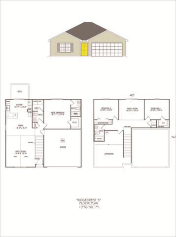 311 Echo Valley Circle, Reeds Spring, MO 65737 (MLS #60120836) :: Team Real Estate - Springfield