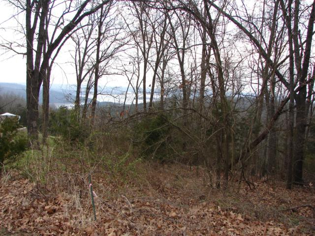 Lot 3 Ridgeview Rd, Branson West, MO 65737 (MLS #60121071) :: Sue Carter Real Estate Group