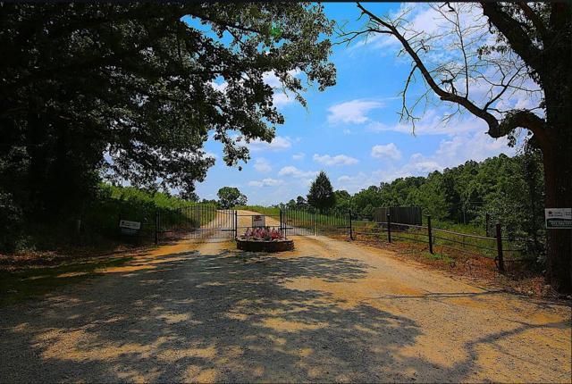 Lot 9b Riverside Ridge Estates, Mammoth Spring, AR 72554 (MLS #60121109) :: Team Real Estate - Springfield