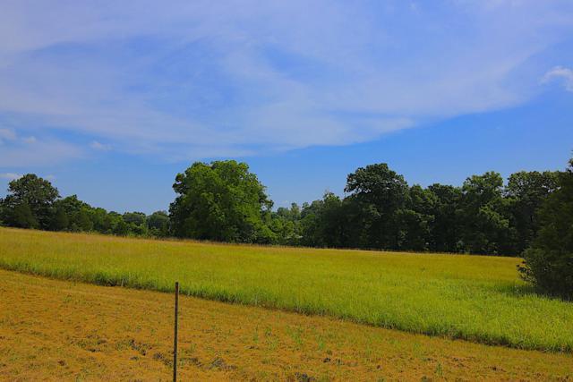 Lot 9a Riverside Ridge Estates, Mammoth Spring, AR 72554 (MLS #60121113) :: Team Real Estate - Springfield