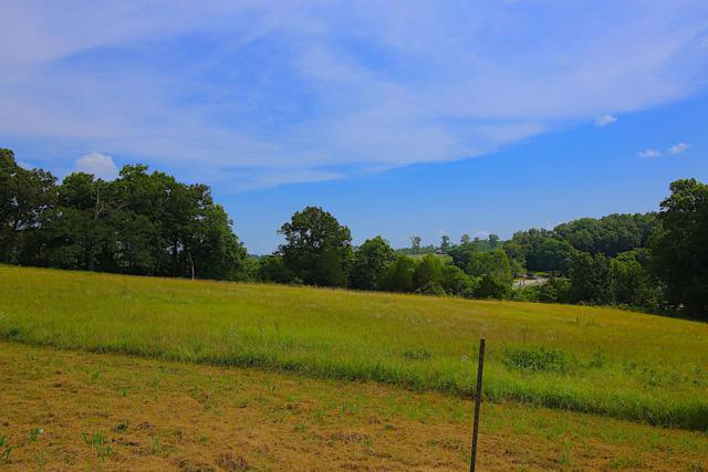 Lot 8b Riverside Ridge Estates, Mammoth Spring, AR 72554 (MLS #60121114) :: Team Real Estate - Springfield