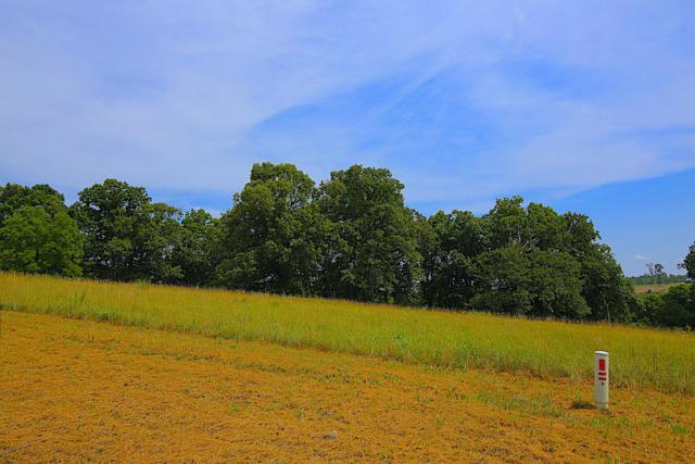 Lot 8a Riverside Ridge Estates, Mammoth Spring, AR 72554 (MLS #60121124) :: Team Real Estate - Springfield